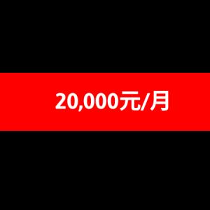 銳眼專案二型 20000